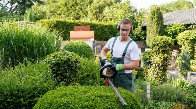 5 Tips for Choosing Landscaping Tools and Equipment for Your Business