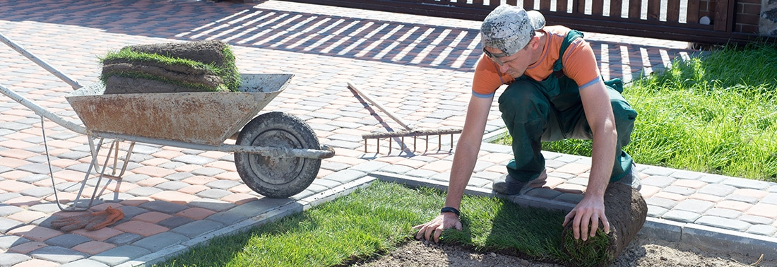 Landscaper Licensing Requirements by State