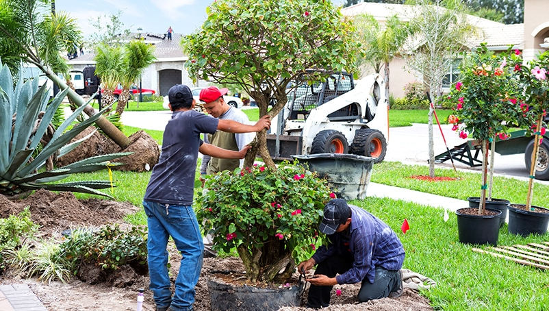 How To Bid On Landscaping Jobs Win More Business Next Insurance