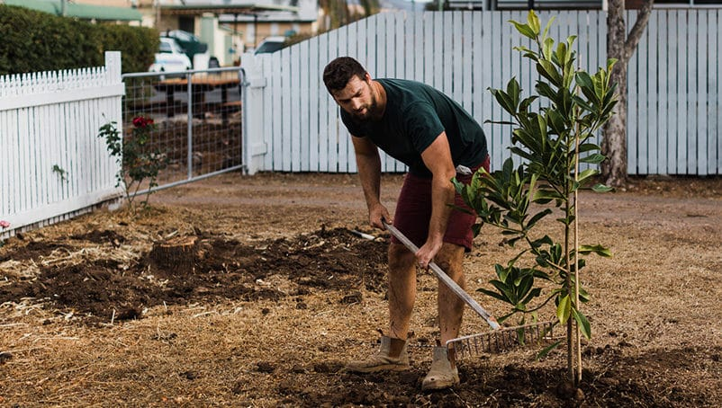 How to Start a Landscaping Business in 5 Steps