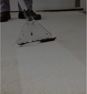 Carpet. Rug and Furniture Cleaning Insurance