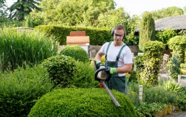 Tools and equipment for landscapers