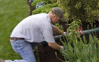 choosing lawn care insurance