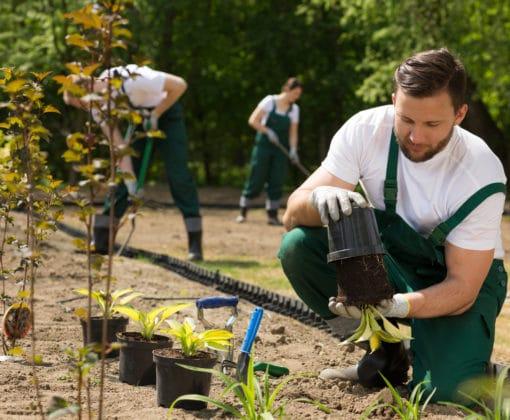 grow your gardening business