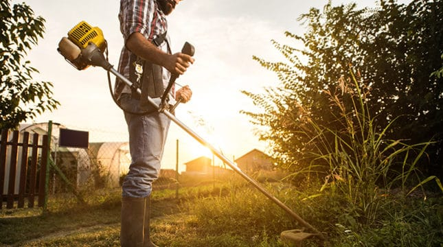 Top 7 Lawn Care & Landscaping Business Tax Deductions